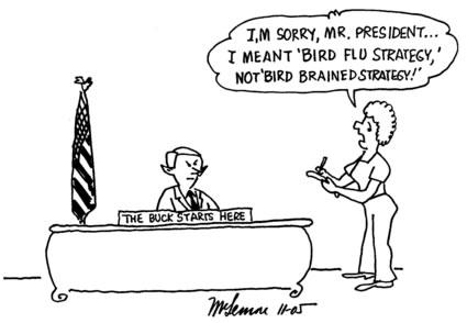 birdflustrategy